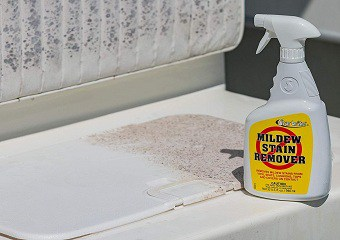Best Mold Removers in 2021